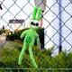 Plüschtier Green Rabbit