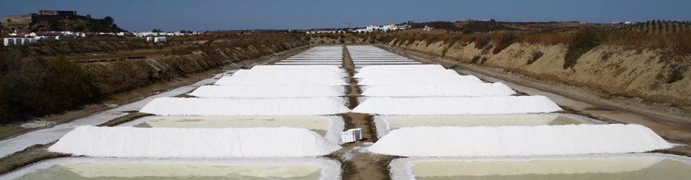 Salz-Kampagne: Weißes Gold für jeden