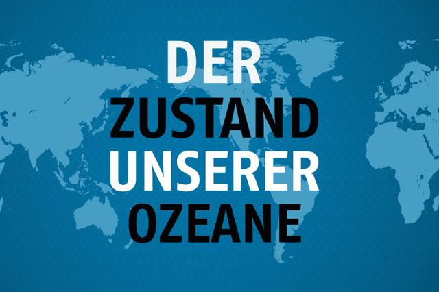 DER ZUSTAND UNSERER OZEANE