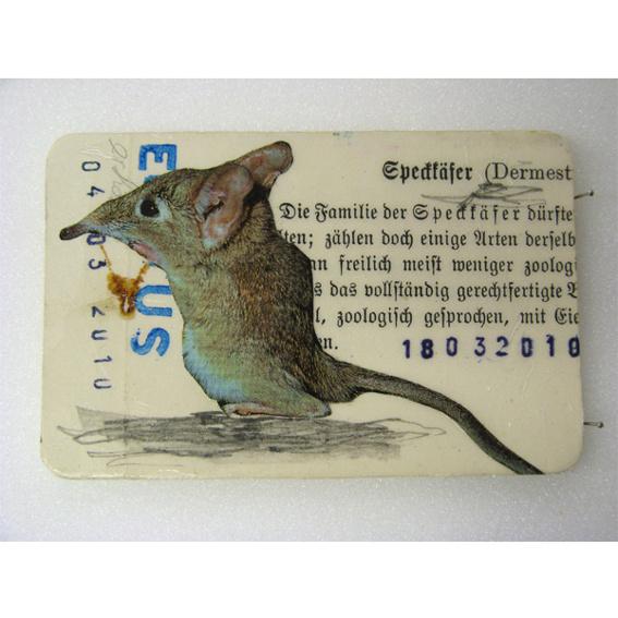 Kunstkreditkarte 'Spitzmaus'