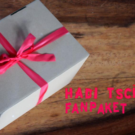 Fan-Paket