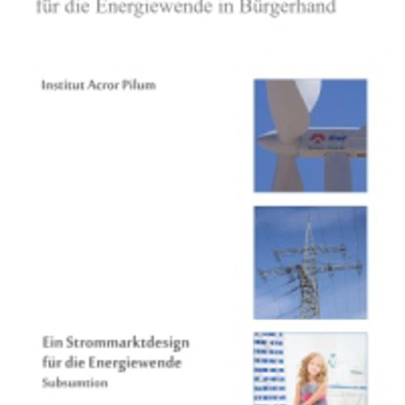 Hybridstrommarkt - Buch
