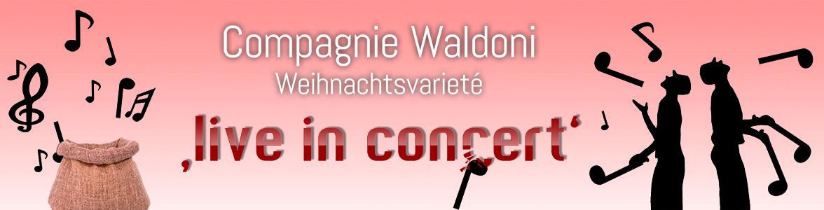 Weihnachtsvarieté 2013 - live in concert