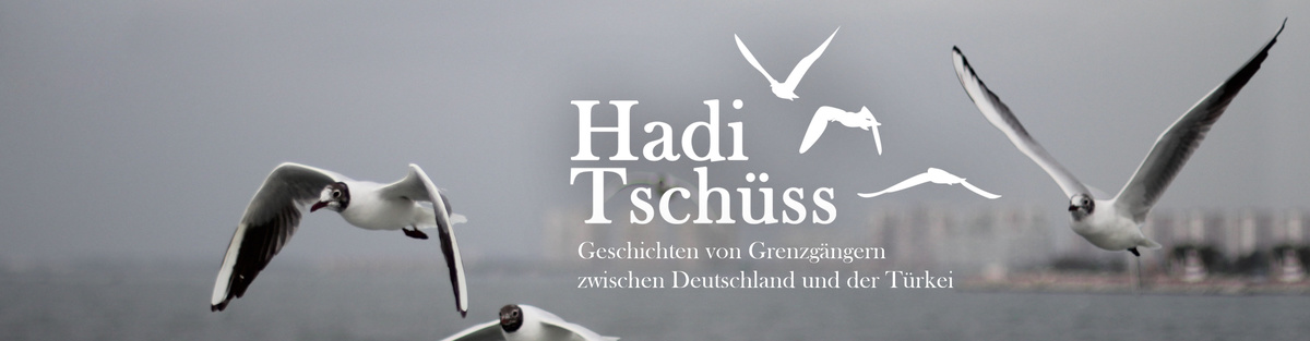 Hadi Tschüss - Documentary