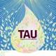 TAU-Poster - Rarität