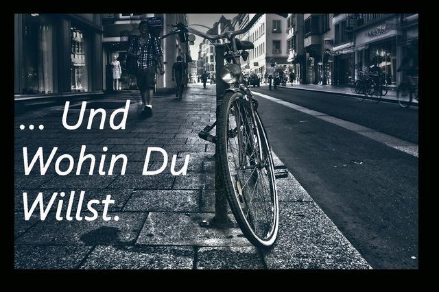 FreiCycle - Umsonst-Fahrräder für alle - immer - überall!