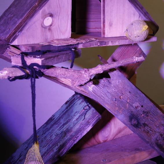 Patenschaft: Nistkasten für Vögel
