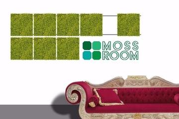 MossRoom