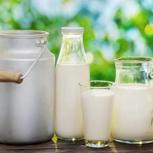 Milch-Einkaufsgutschein 6 Liter