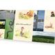 Gedruckte Wilma, Schwarzwaldwurm-Postkarten