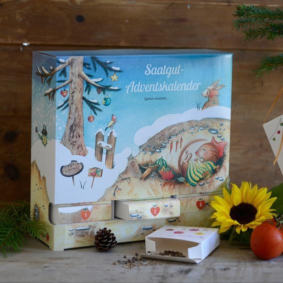 Kombipack (Adventskalender + Poster)