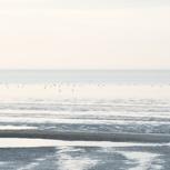 Eine frische Brise Nordseewind
