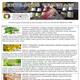 3 Pflanzenextrakte Heilpflanzen