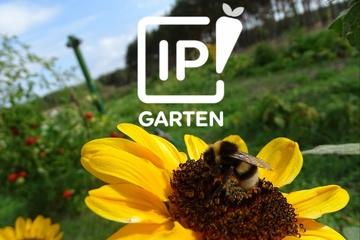 IPGarten App - pflanzen & lernen