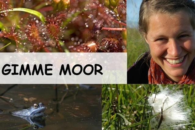 Gimme Moor