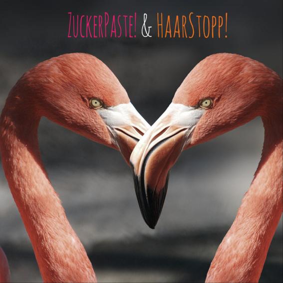 Early Bird ZuckerPaste! und HaarStopp! Set im Doppelpack!