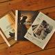 Das Fotobuch 2013 + die Ausgaben aus 2012 und 2011