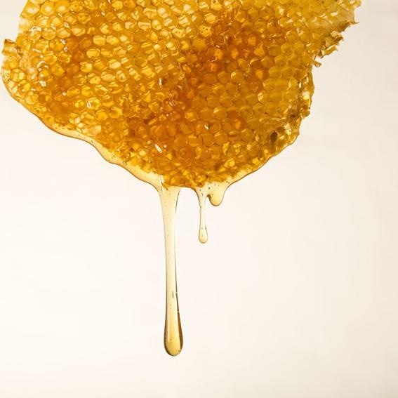 Honey – until death do us part