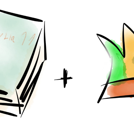 elfuhrelf Buch + Narrenkappe