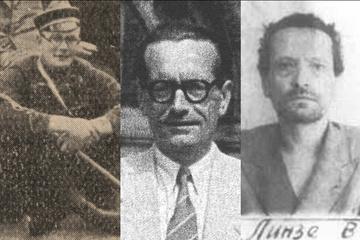 Biografie Walter Linse