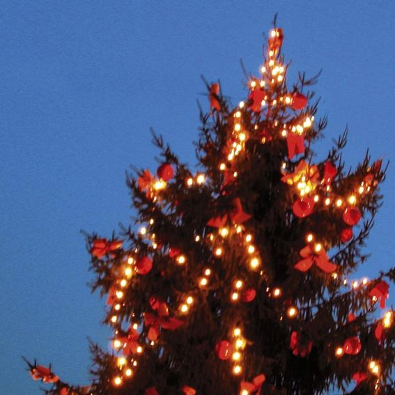 Weihnachtslieferung dazu buchen