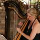 Wohnzimmerkonzert mit Harfe
