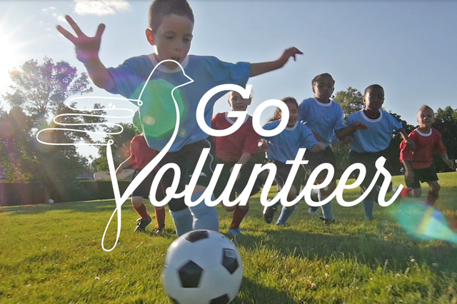 GoVolunteer. Help where you are needed.