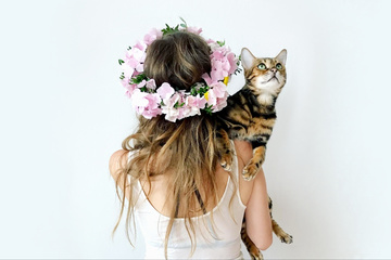 MEOW.LOVE _ Online Store For Crazy Cat Ladies