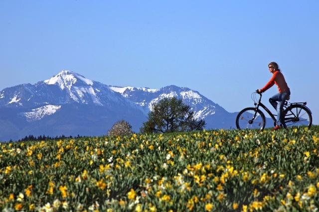 Mit dem Fahrrad über die Alpen - Eine Klassenfahrt