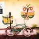 Fahrrad-Picknick-Ausflug Spezial