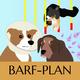 BARF-Plan Allergie/krank/Giardien/Sport - erstellt von unserer Ernährungsexpertin