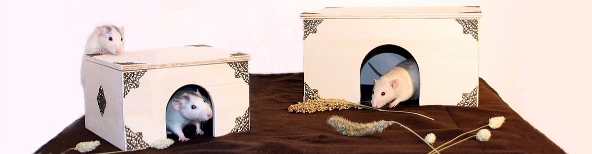 Nagerpalast - Besondere Einrichtung für Kleintiere