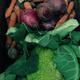 Gemüse retten auf dem Acker