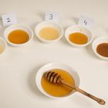 Entdecke die geschmackliche Vielfalt von Honig - Honigverkostung
