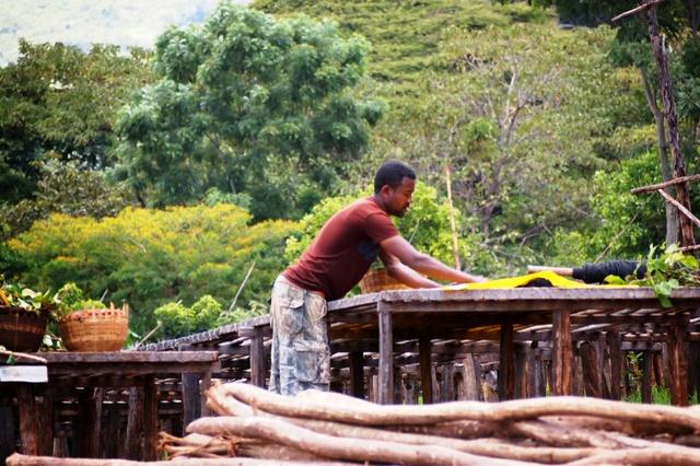 KuKu - ein Tee aus den tiefen Erden Afrikas