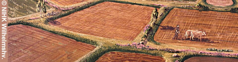 Datierungen eisenzeitlicher Feldfluren in Schleswig-Holstein