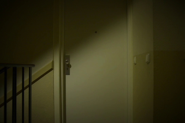 Die Spinne (AT)