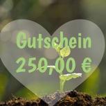 250 Euro Einkaufsgutschein limitiert