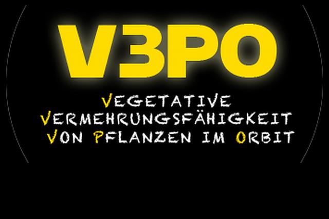 Vegetative Vermehrung von Pflanzen im Orbit (V3PO)