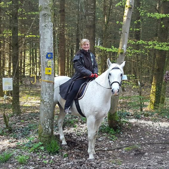 The Way of St. James on horseback