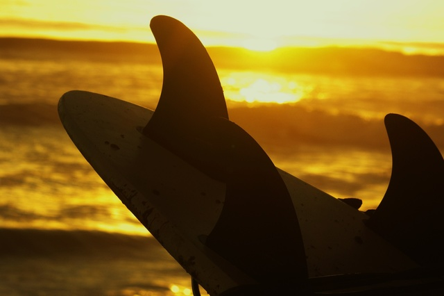 FITNESS-LIFESTYLE-RATGEBER: Finde die Welle deines Lebens