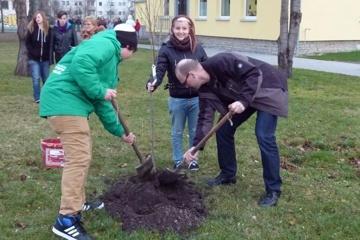 Nachhaltige Grundschule