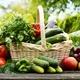 großer Obst- und Gemüsekorb