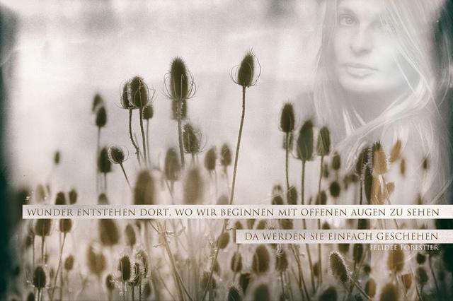 Elementekind Poesie CD von Felidée Forestier