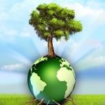 """Dein Baum für Hamburg (Pflanzaktion zusammen mit der Loki-Schmidt-Stiftung und dem Projekt """"Mein Baum, meine Stadt"""")"""