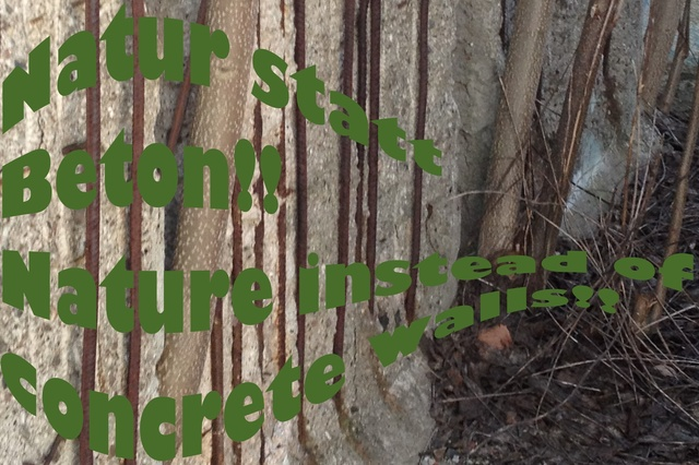 Musik-Album für die Rettung des Mauerparks Berlin