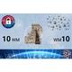 10 WM Wertkarte