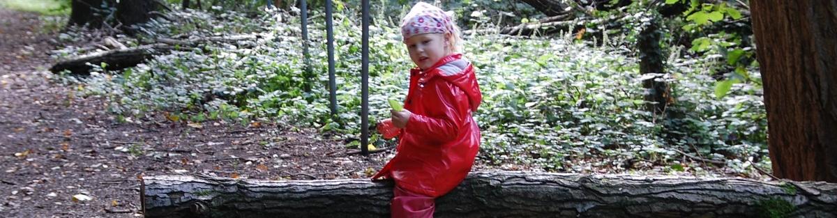 Waldkindergarten Frischlinge