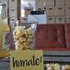 HiMate!-Kino Event in unseren Hallen