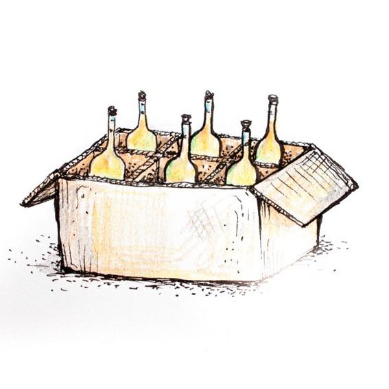 Sixpack Olivenöl